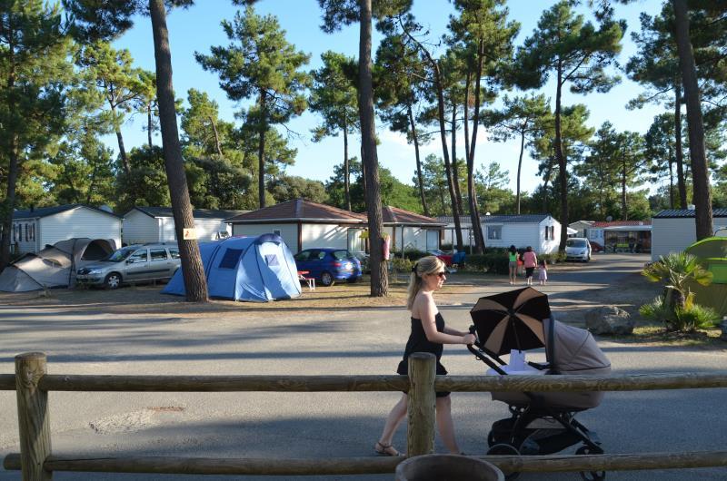 Emplacement camping sans électricité vendée