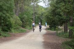 pistes cyclables près saint jean de monts