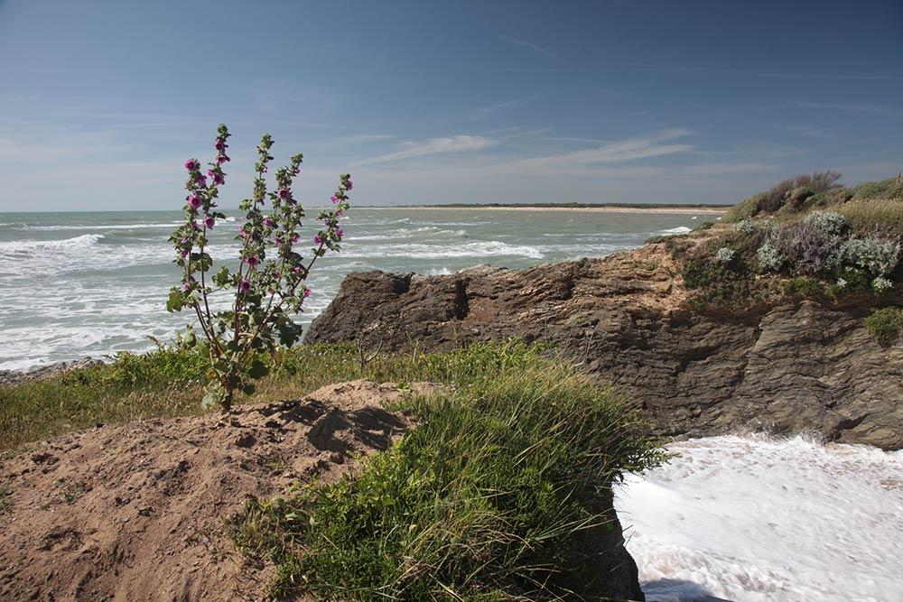 Saint Hilaire de Riez - côte rocheuse