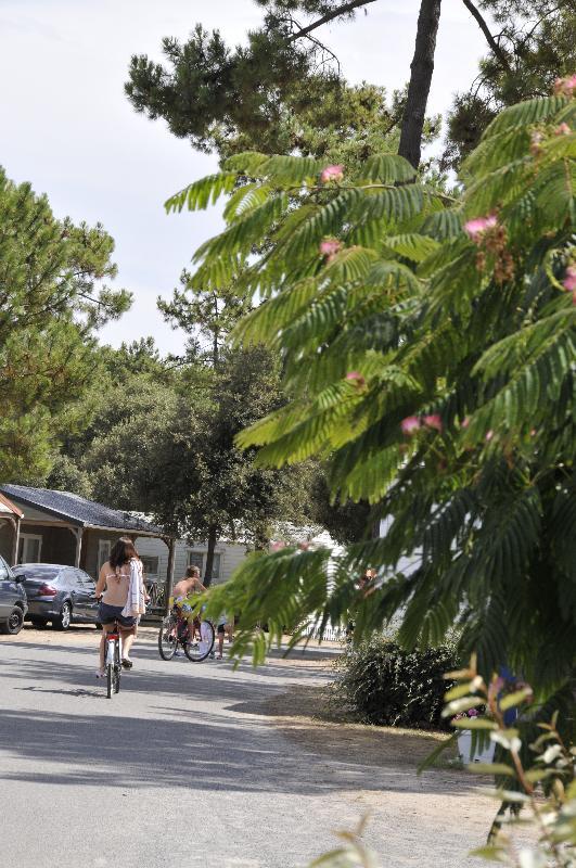 location de vélos st jean de monts au camping