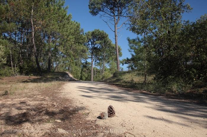 camping à Saint Jean de Monts parfait pour le week end de l'ascenscion